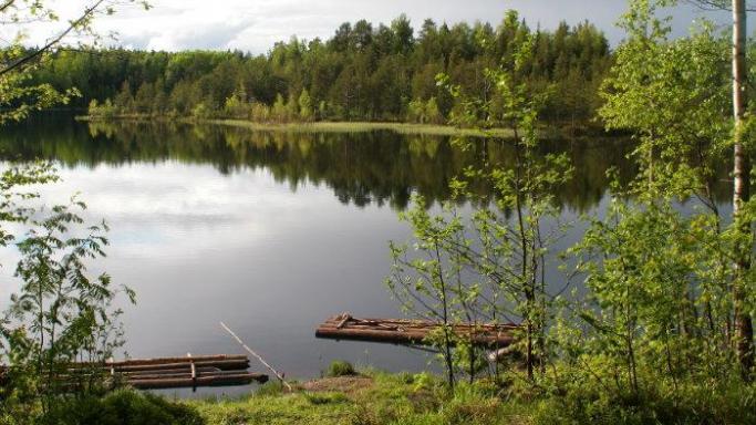 Эколого-патриотическая тропа - озеро Половинное