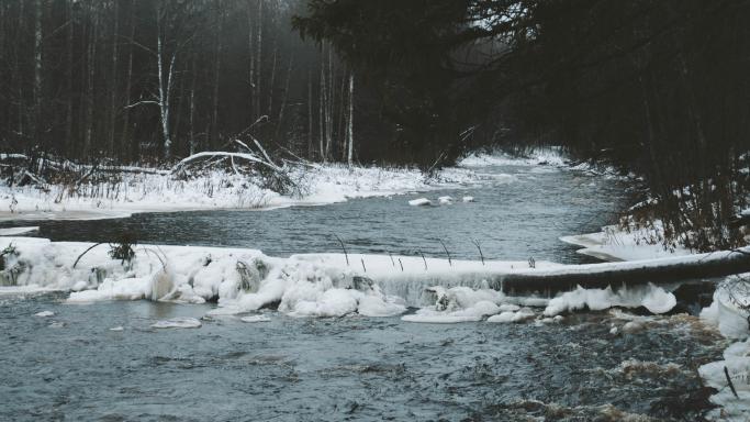 Кольцевая тропа вдоль реки Лососинки